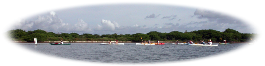 Kayaking near Mullethead Island in Titusville